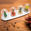 Containers for  salt and pepper four seasons