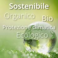 Sostenibile