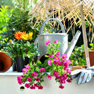 Garten & Heimwerk