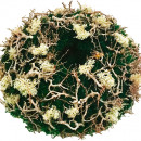 wholesale Cushions & Blankets: Pillows stabilized moss around 40cm branch