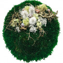 wholesale Cushions & Blankets: Pillows stabilized moss around 40cm deco