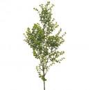 Großhandel Kunstblumen:Eucalyptus Zweig 76cm