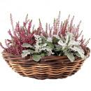 wholesale Garden Furniture:Rattan planter D41 brown