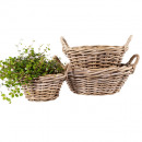 wholesale Garden Furniture:Rattan bowl Ø35 H15cm