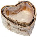 Birch heart X 17 / 20cm