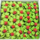 Lucky clover litter green-red 3cm with adhesive pa