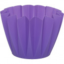 Pot Adonis 11cm purple