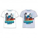 Thomas & Friends T-Shirt CHLOPIECY TH 52 02 ...
