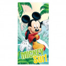 Mickey MOUSE & FRIENDS CHOKESHOUSE CLICK DIS M