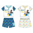 Mickey MOUSE & FRIENDS BABY SET DIS BMB