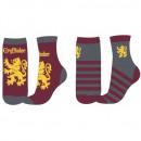 wholesale Stockings & Socks: HARRY POTTER CHLOPIECE SAW HP 52 34 011 2-PAC