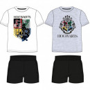 grossiste Pyjamas et Chemises de nuit: HARRY POTTER PIZAMA MALE HP 53 04 035/036