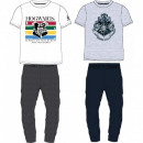 grossiste Pyjamas et Chemises de nuit: PIZAMA HARRY POTTER HOMME HP 53 04 044/045