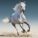 wholesale Cushions & Blankets: Photoprints Sweet home White horse Pillow cover