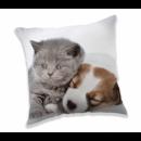 Puppy and Kitten Pillow