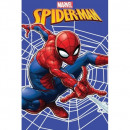 wholesale Cushions & Blankets: SPIDER-MAN Spider-man Web blancket fleece