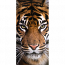 ingrosso Bagno: Photoprints Sweet home Telo mare tigre