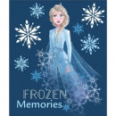 Frozen ( frozen ) blancket FLEECE GIRL DIS F