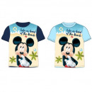 Mickey MOUSE & FRIENDS T-Shirt DISF MFB BOYS 5