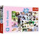grossiste Jouets: Puzzle de 60 éléments - Le monde du chat