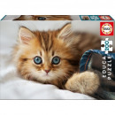 Puzzle Cat Puzzle 200 pieces Kitty