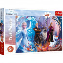 Puzzle Disneyfrozen 100 pieces puzzle frozen 2