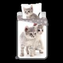 Impresiones fotográficas Sweet home Kitten Grey