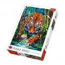 Puzzle 1000 pieces - Scare Tiger