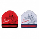 Spiderman BOY'S HAT SP S 52 39 1202