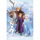 frozen Frozen 2 blancket fleece