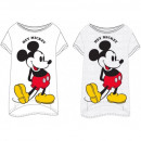 wholesale Licensed Products: Mickey MOUSE & FRIENDS T-Shirt WOMEN'S SLE