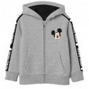 groothandel Kleding & Fashion: Mickey MOUSE & FRIENDS SWEATSHIRT JONGENS DIS