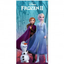 wholesale Licensed Products: Frozen ( frozen DIS FROZ GIRL'S BOWL 5