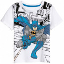 BatmanT-Shirt BOYS BAT 52 02 332