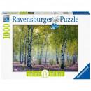 Puzzle 1000 pieces Nature 1