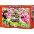 Puzzle 500 elementow - Kociak w kwiecistym ogrodzi