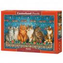 Puzzle 500 elementow Cat Aristocracy