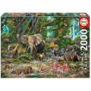Puzzle 2000 pieces African Jungle