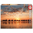 Puzzle 1000 pieces Sunset at Cable Beach,