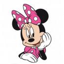Minnie Minnie Pink 02 Pillow Shape