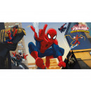 Decorazione da parete Ultimate Spiderman Web Warri