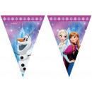 Banner flag frozen Northern Lights - Frozen -