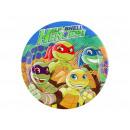 Las placas de cumpleaños Mutant Ninja Turtles - 23