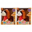 grossiste Fournitures pour animaux de compagnie: boîte à tartes plusz / plast boîte de fenêtre ...