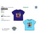 Paw Patrol - T-Shirt tuleja krótki 100% bawełna
