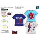 SPIDERMAN - t-shirt manchette courtes 100% coton