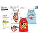 wholesale Underwear: DC SUPER HERO GIRLS - 100% coton