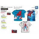 Spiderman - T-Shirt 100% short cuff coton