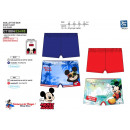 wholesale Underwear: Mickey - sublime bath boxer dev 85% polyester / 1