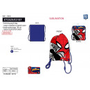 Spiderman - 100% pool bag polyester